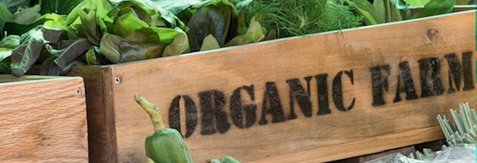 5 Reasons to go Organic this September