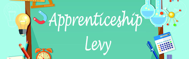 Apprenticeship Levy Quick Guide for Schools