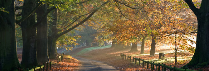 8 Things To Do in Kent This Autumn